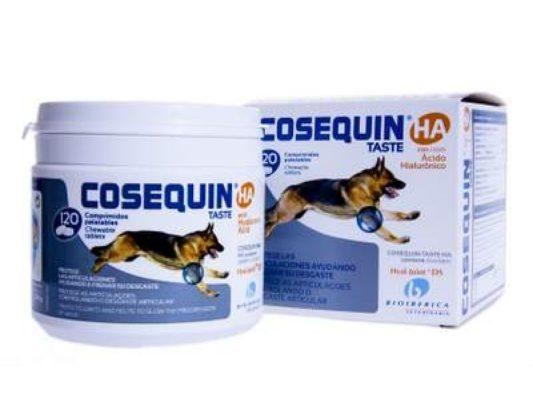 Препараты лечение суставов собак купить бандаж для плечевого сустава в челябинске
