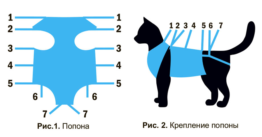 Попона для кошек своими руками выкройки 51